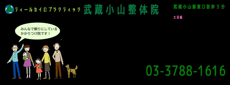 ティールカイロプラクティック武蔵小山整体院